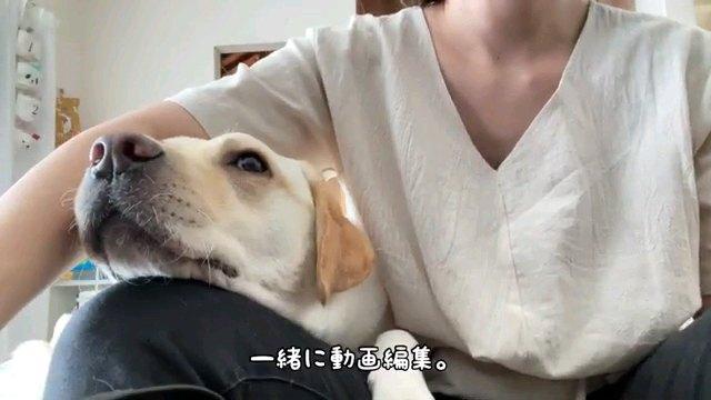 一緒に~字幕