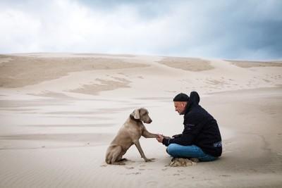 砂浜に座る犬と飼い主