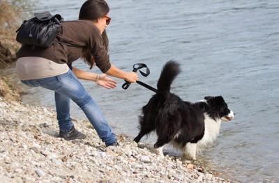 川に入ろうとする犬と止める飼い主
