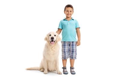 ゴールデンレトリーバーと男の子