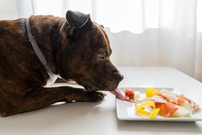 テーブルの上のお皿に乗った生ハムを食べる犬