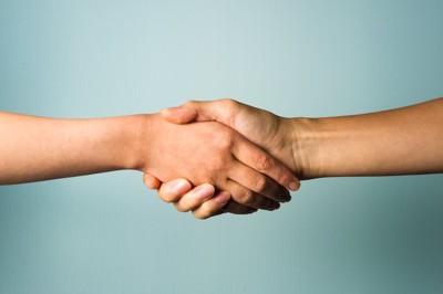 握手をする人の手