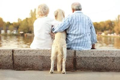座る老夫婦の間に立つ犬の後ろ姿
