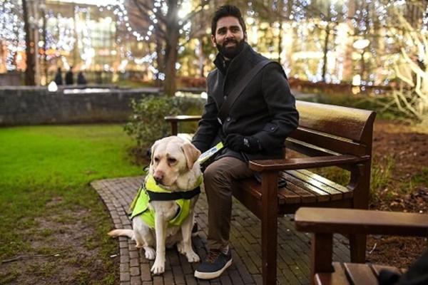 ベンチに座る男性と盲導犬