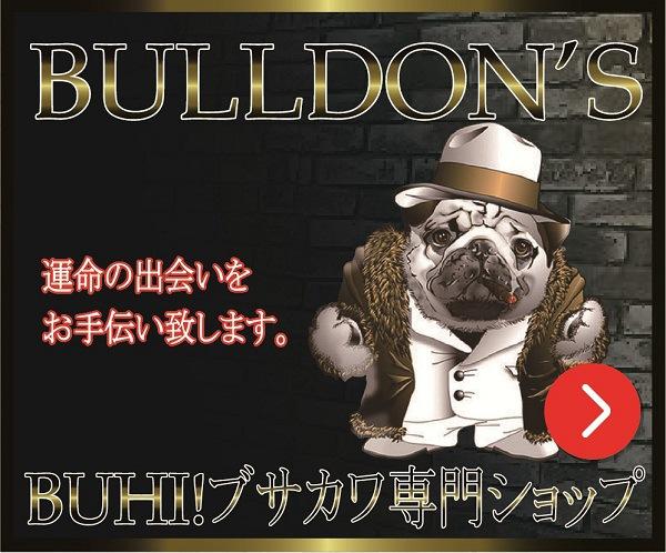 bulldons-バナー01