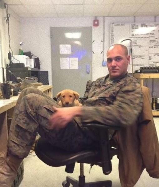椅子に座る軍人と犬
