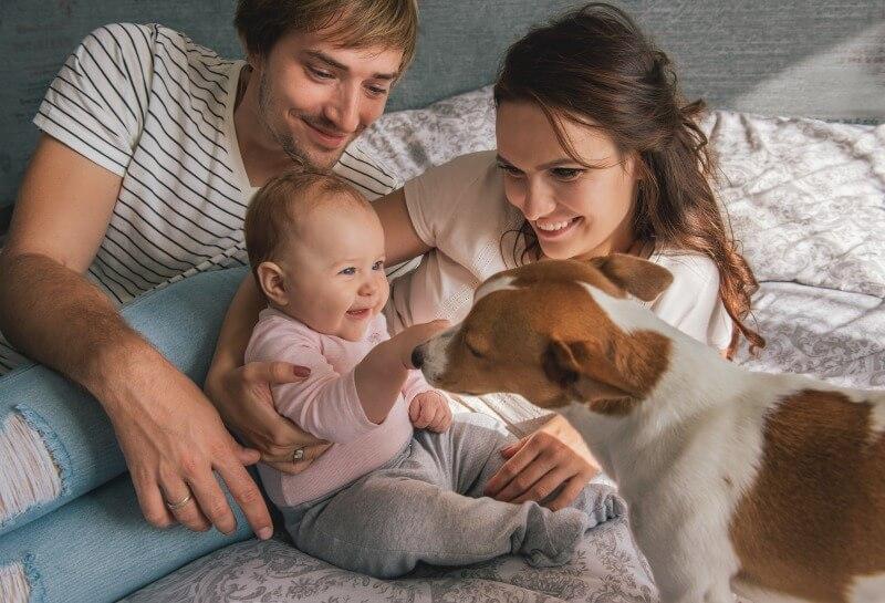 犬とスキンシップを取っている赤ちゃんと家族