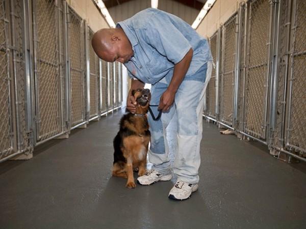 檻が沢山設置された通路にいる黒人男性と犬