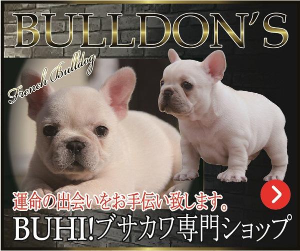 bulldons-バナー03