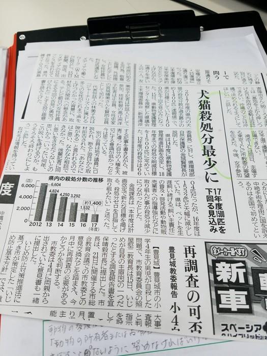 沖縄タイムズ これはスタッフ提供の写真です