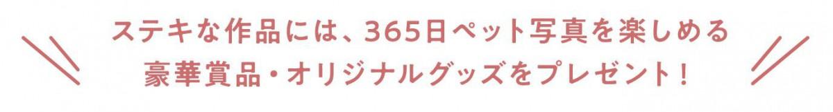 2-1_景品_タイトル