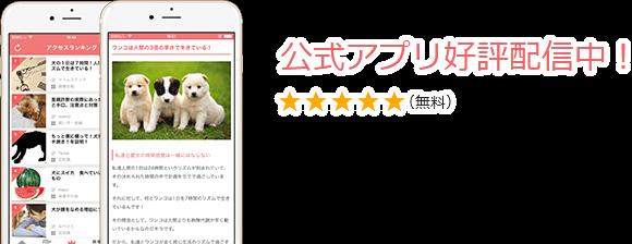 公式アプリ好評配信中!